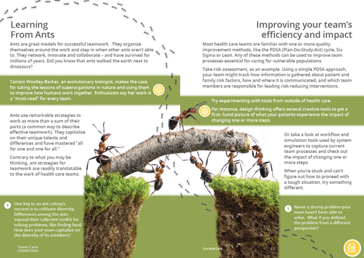 Ants and Teamwork - Team Care Connections